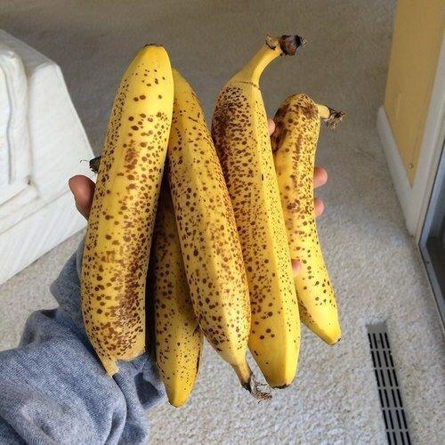 food, yellow, corn on the cob, produce, maize,