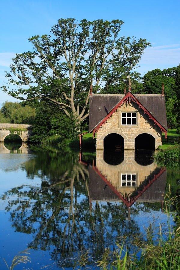 tree,reflection,waterway,