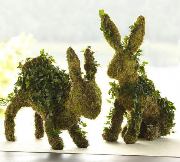 plant, tree, army men, land plant, leaf,