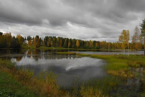 Rovaniemi/Ranua, Finish Lapland