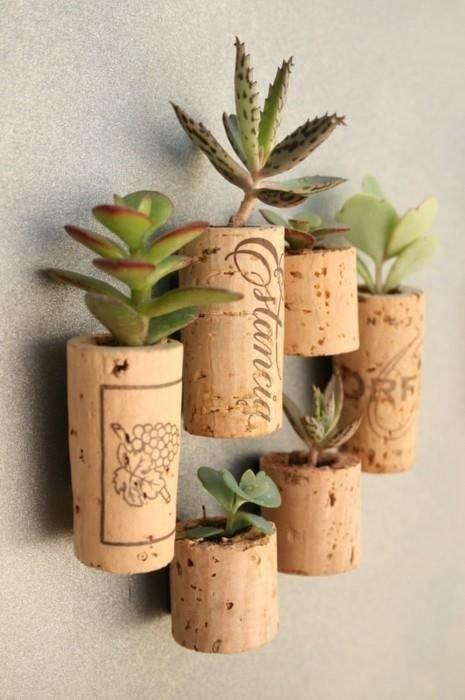plant,land plant,lighting,flowerpot,candle,