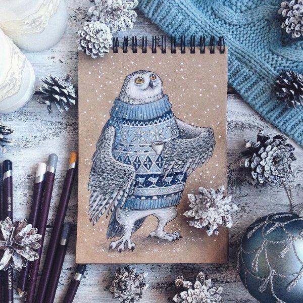 Owl in a Sweater