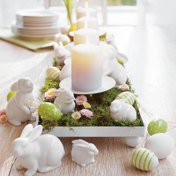 petal, flower, meal, centrepiece, cake decorating,