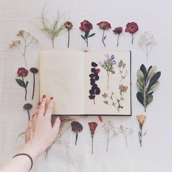 Press Your Bouquet