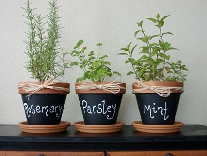 Flower Pots for the Garden...