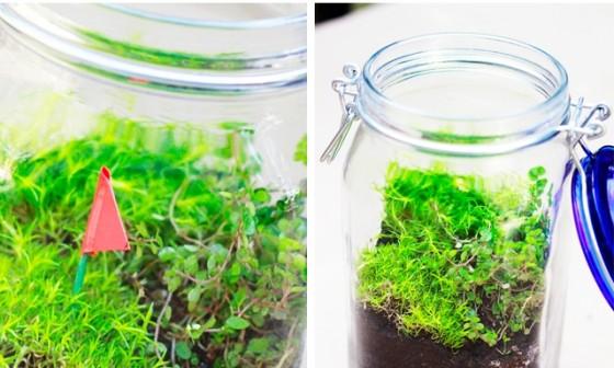 Any Glass Jar