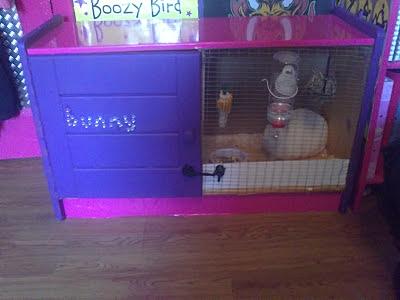 Cabinet Rabbit Home