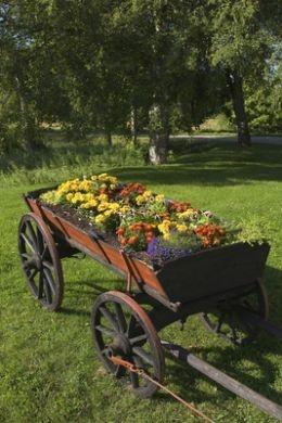 Plant a Unique Flower Bed