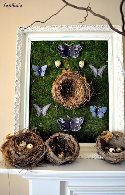 Framed Moss Nest