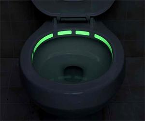 Toilet Illuminator