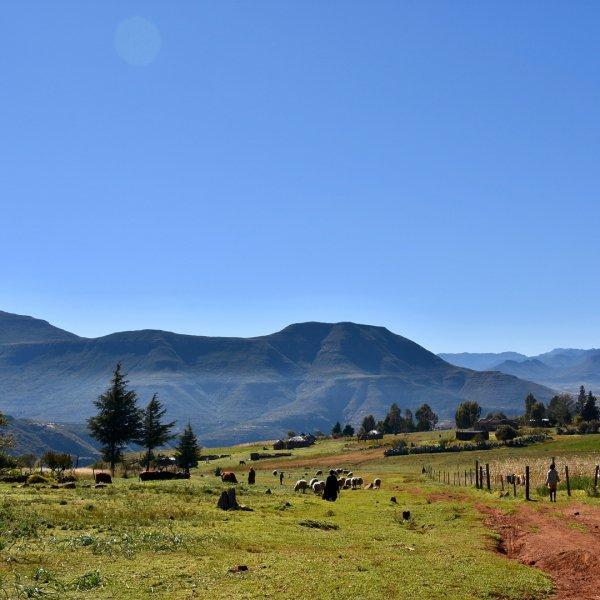highland, sky, grassland, mountainous landforms, mountain,