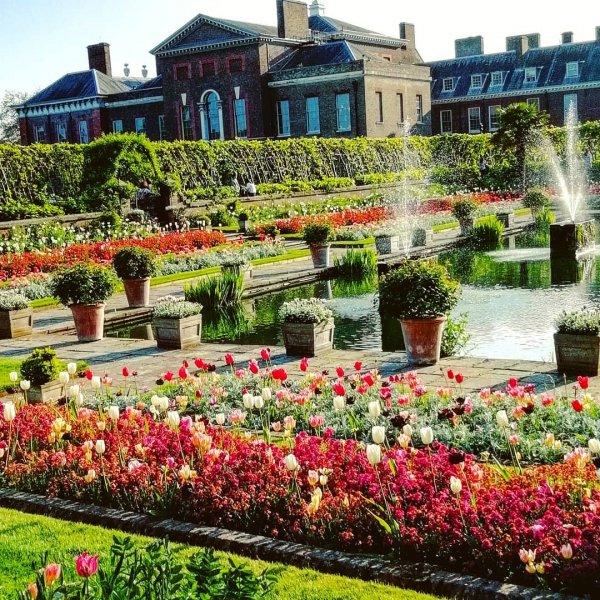 Garden, Botanical garden, Flower, Property, Plant,