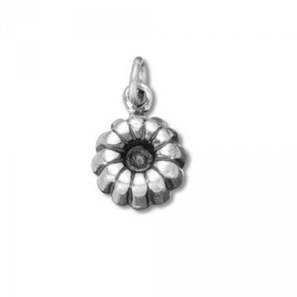 jewellery, earrings, pendant, fashion accessory, silver,