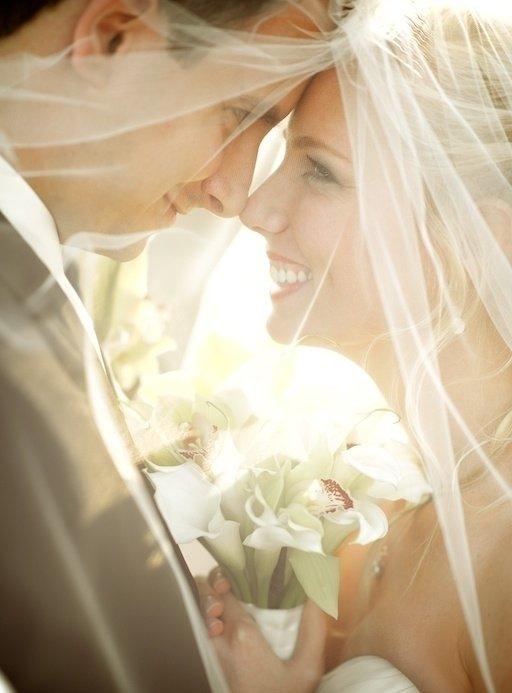 bride,woman,photograph,person,bridal accessory,
