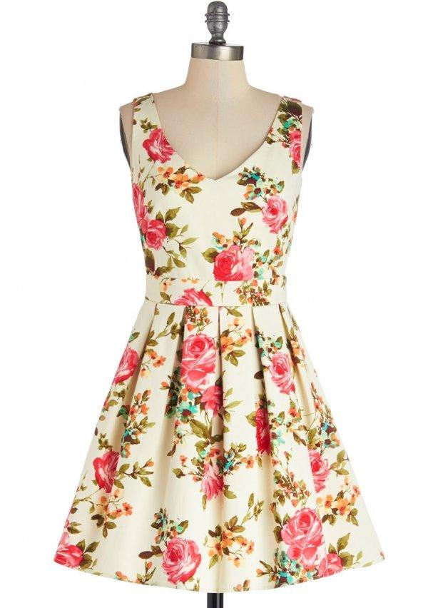 Bookmaking Brunch Dress