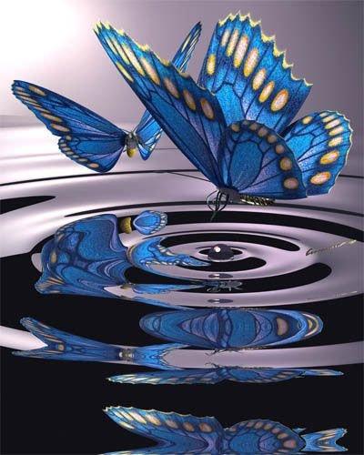 blue,glass,wing,flower,