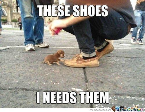 Eternal Shoe Lust