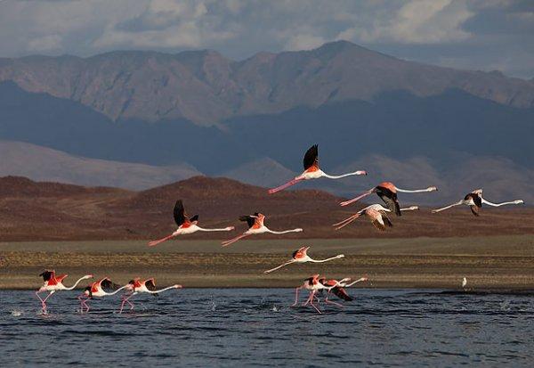Lake Turkana National Park, Kenya