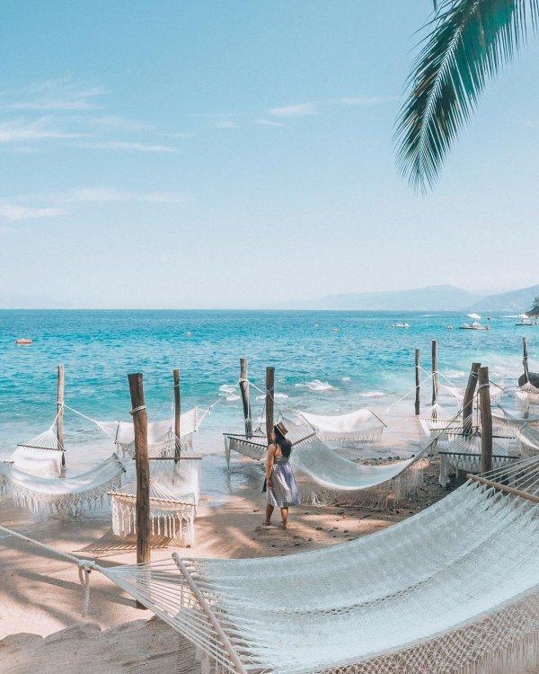 Vacation, Beach, Sea, Ocean, Tree,