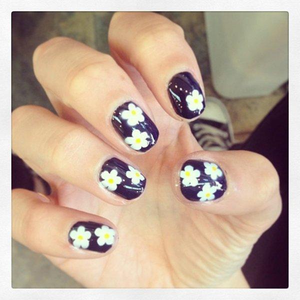Cute Little Daisies