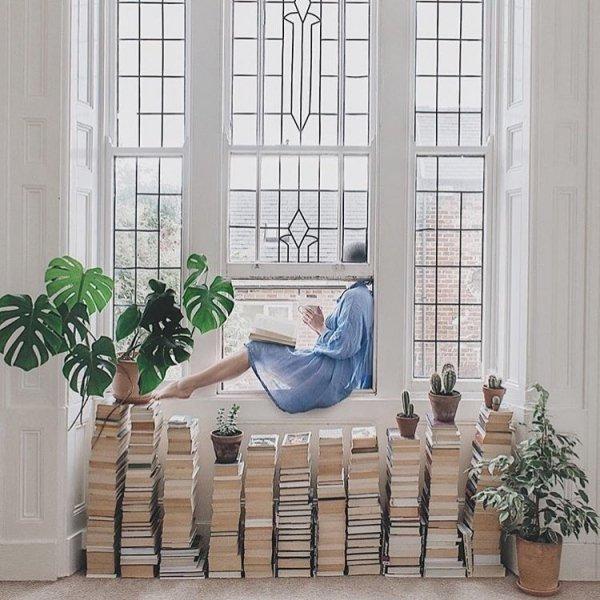 Room, Furniture, Houseplant, Window, Flowerpot,