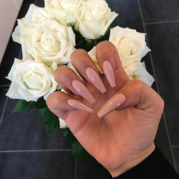 flower, rose, rose family, flower bouquet, cut flowers,