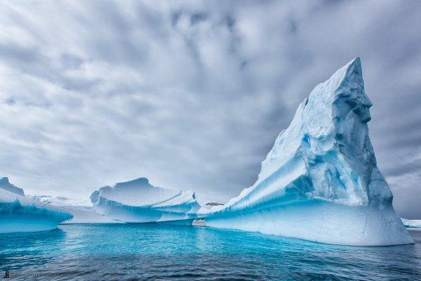 Spend Christmas in Antarctica