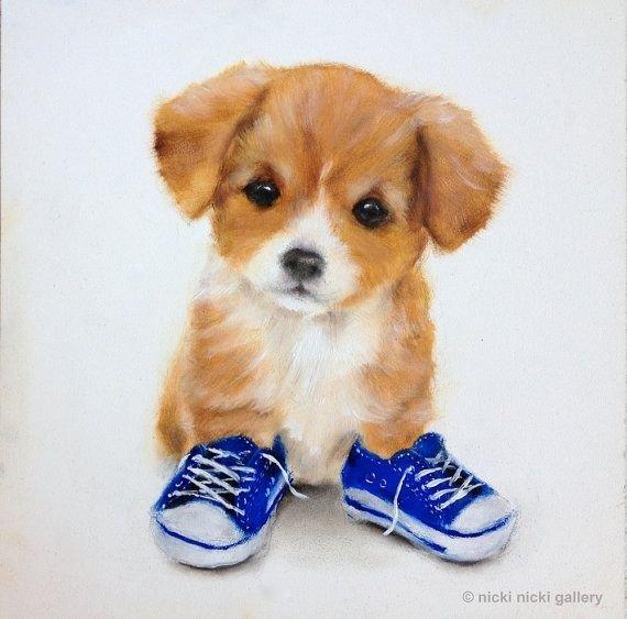 dog,mammal,dog breed,vertebrate,puppy,