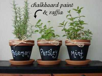 plant,flower,herb,flowerpot,food,