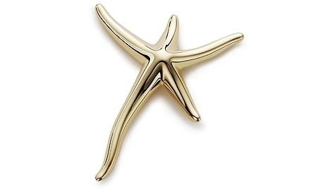 Elsa Peretti Starfish Brooch