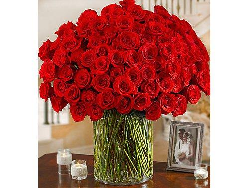 flower,cut flowers,flower arranging,red,plant,
