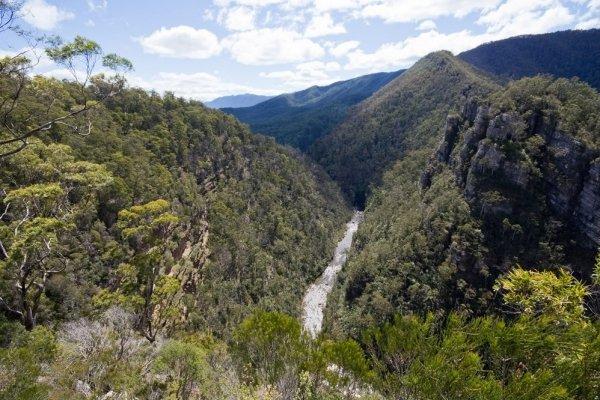 Alum Cliffs, Mole Creek