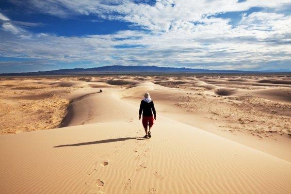 Visit the Gobi Desert