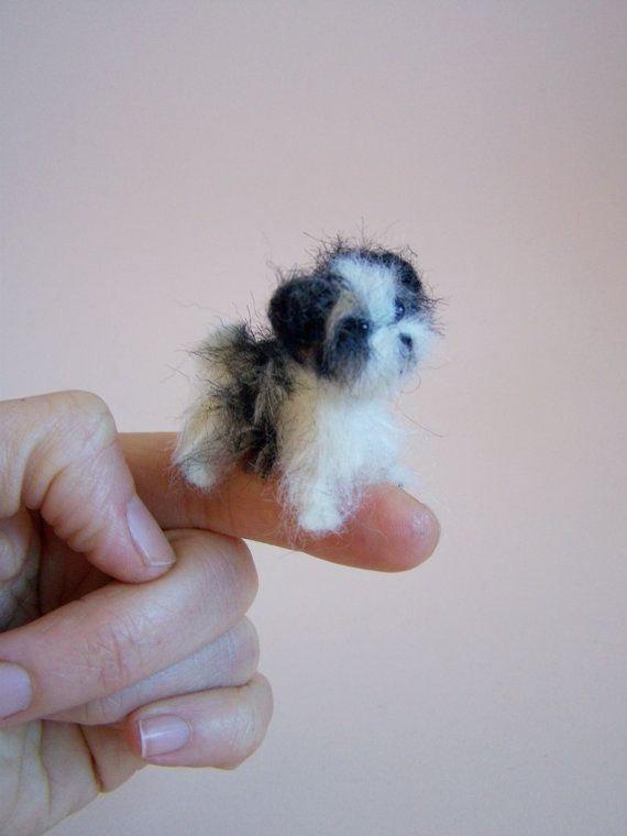 Itty Bitty Puppy