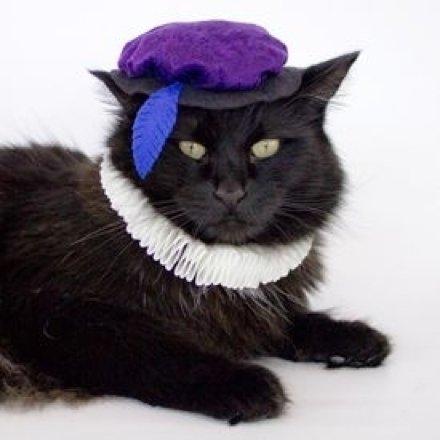 Catspeare