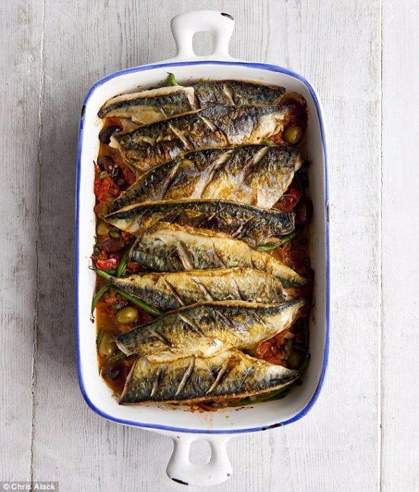 fish, dish, mackerel, food, forage fish,
