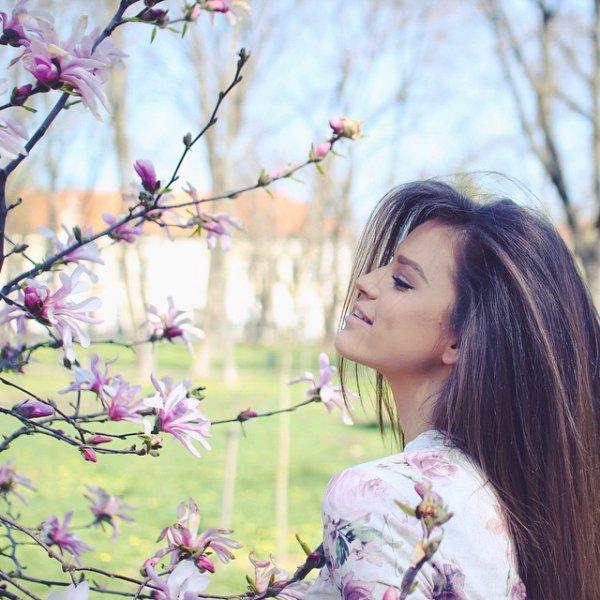 flower, blossom, plant, pink, branch,