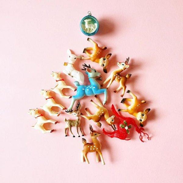 fashion accessory, jewellery, flower, petal, hand,