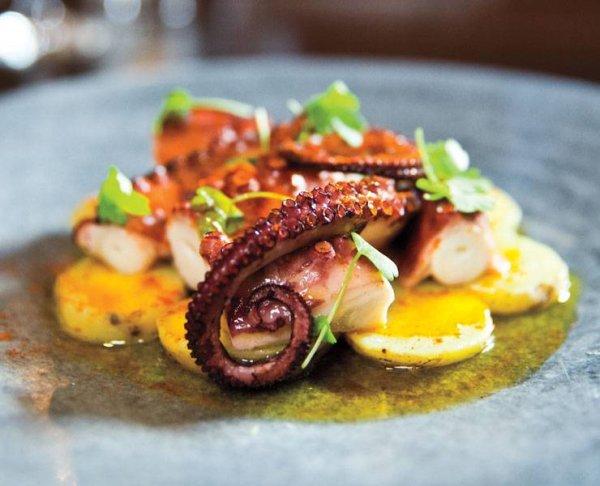 dish, food, meal, produce, cephalopod,