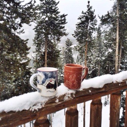 snow, winter, weather, tree, season,