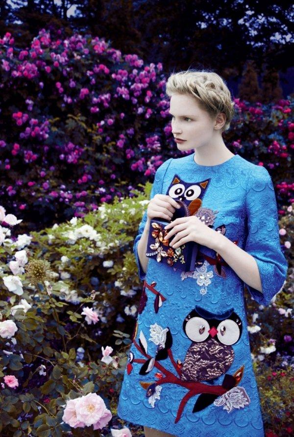 blue,clothing,dress,flower,beauty,