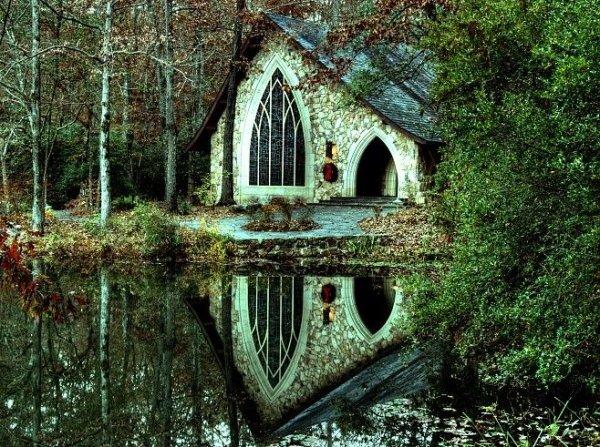 Callaway Gardens,habitat,natural environment,forest,woodland,