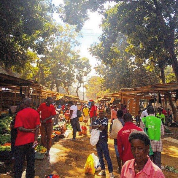 public space, tree, crowd, community, marketplace,