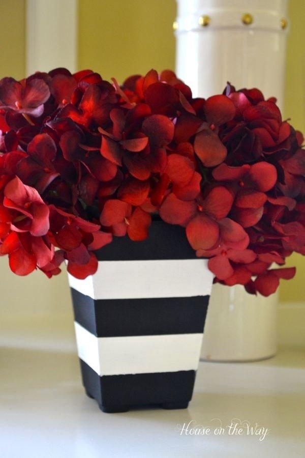 Black White Striped