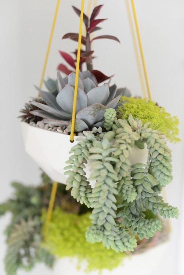 flower arranging,floristry,flower,floral design,christmas decoration,