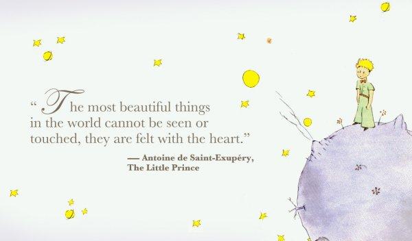 Citaten Uit Le Petit Prince : Citations de « le petit prince qui vous inspirera