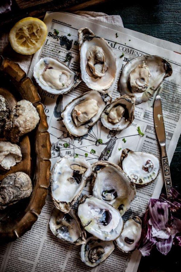 food, oyster, molluscs, invertebrate, seafood,