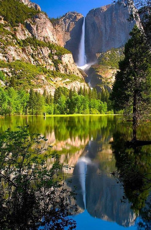 Yosemite National Park, Yosemite Falls,nature,mountainous landforms,reflection,body of water,