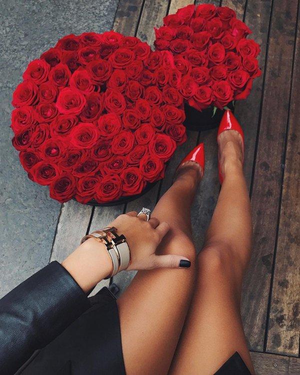 red, clothing, flower, organ, petal,