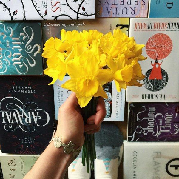 flower, yellow, plant, advertising, flowering plant,